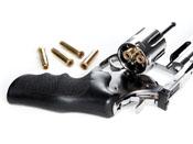 ASG Dan Wesson Revolver Pellet Cartridges 25-Pack