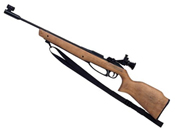 Daisy Avanti 753 Air Pellet Rifle